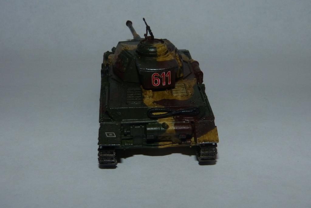 """28. Beutepanzerdivision """"Vorschlaghammer"""" - Seite 2 P1040941"""