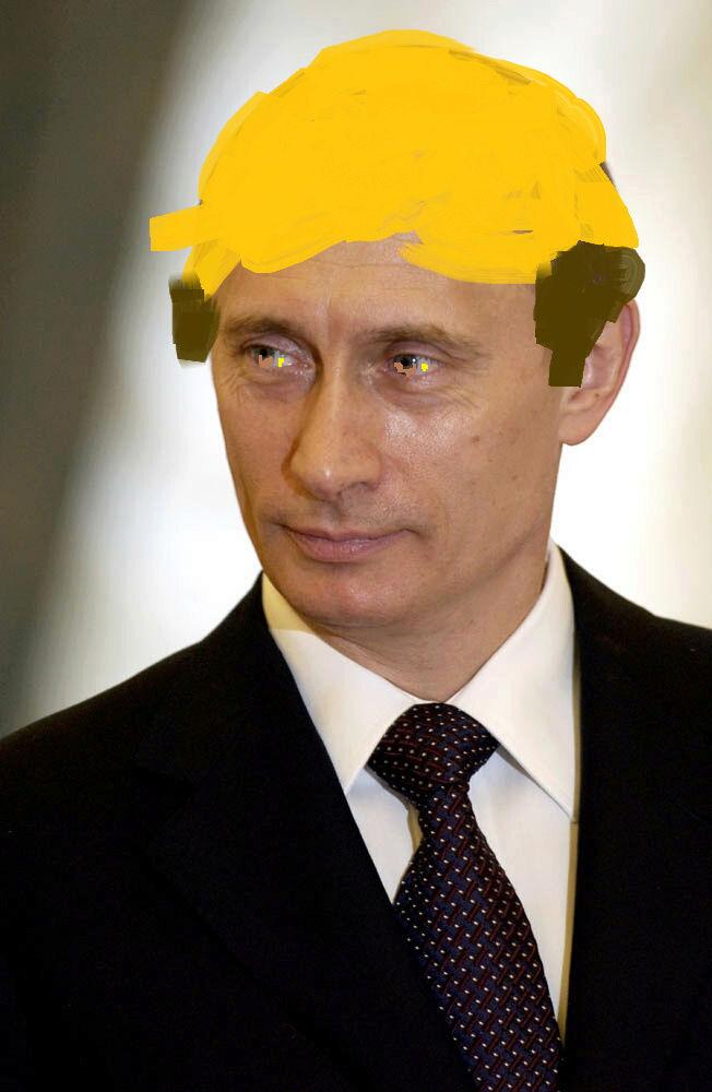 Help meeeee Putinp10