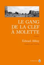 Nouveautés romans - Page 3 Abbey10