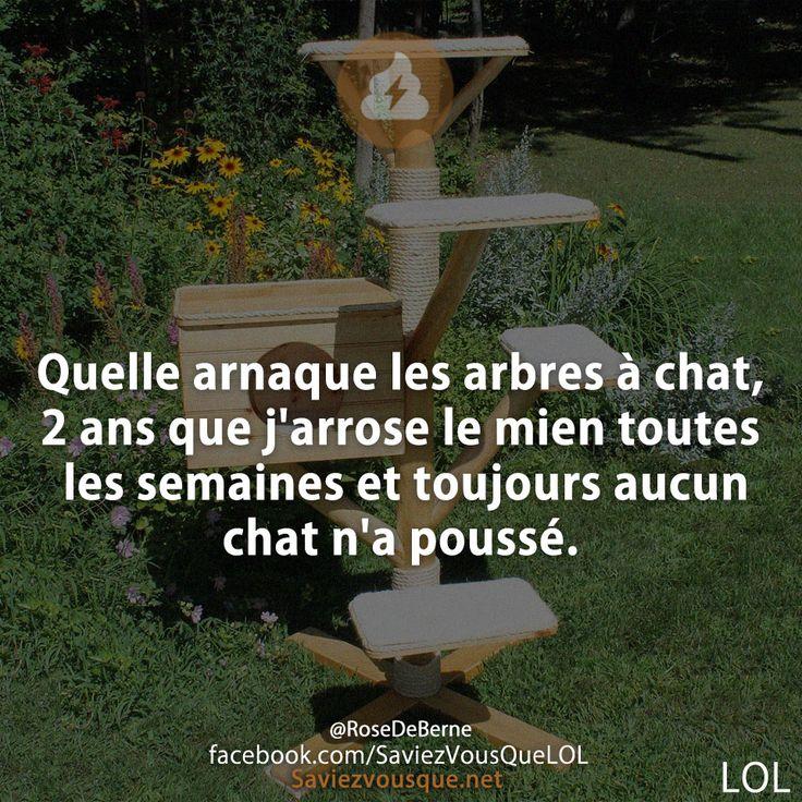 Le plus drôle des Acadiennes et des Acadiens... - Page 2 05d64910