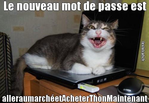 Le plus drôle des Acadiennes et des Acadiens... Ob_c3610