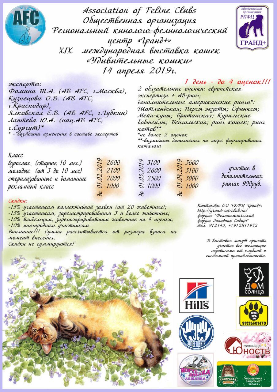 Международная Выставка кошек AFC, 14 апреля 2019 года, г. Сургут Viber_10