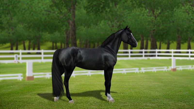 Регистрация лошадей в RHF 2 - Страница 7 1112