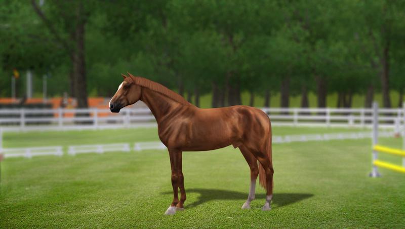 Регистрация лошадей в RHF 2 - Страница 7 1311