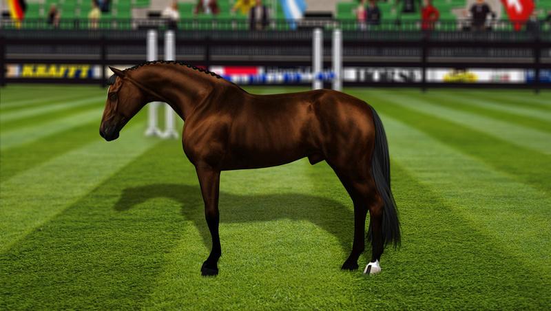 Регистрация лошадей в RHF 2 - Страница 7 1612