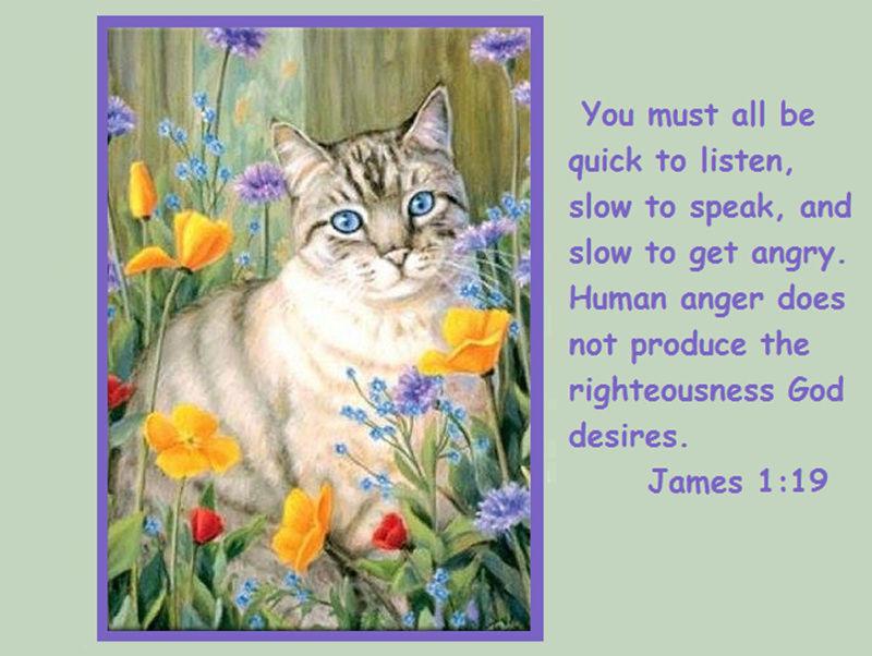 James 1:19 14705610