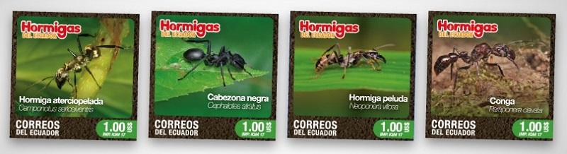 Sobre o postal de Ecuador Hormig10
