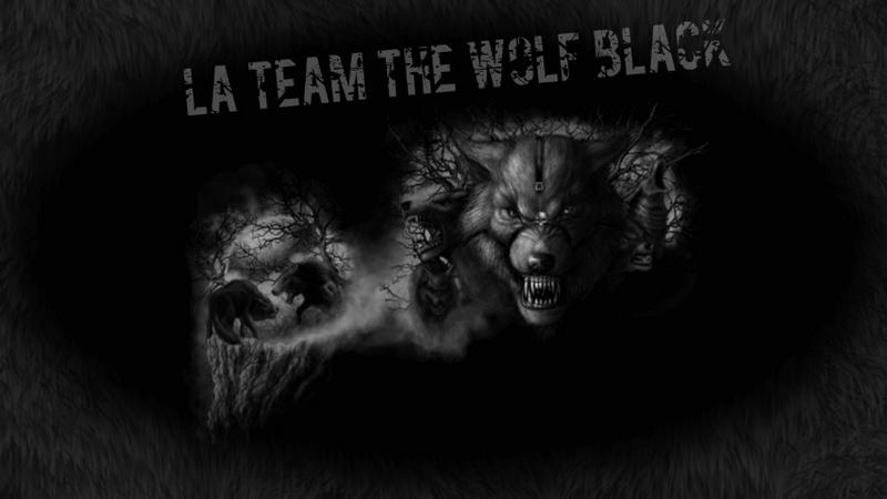 voila black wolf 13669711