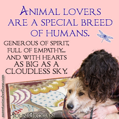 ARE YOU AN ANIMAL LOVER...POST HERE. 20140611