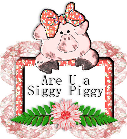 WHO IS A SIGGY PIGGY - Page 16 Image110