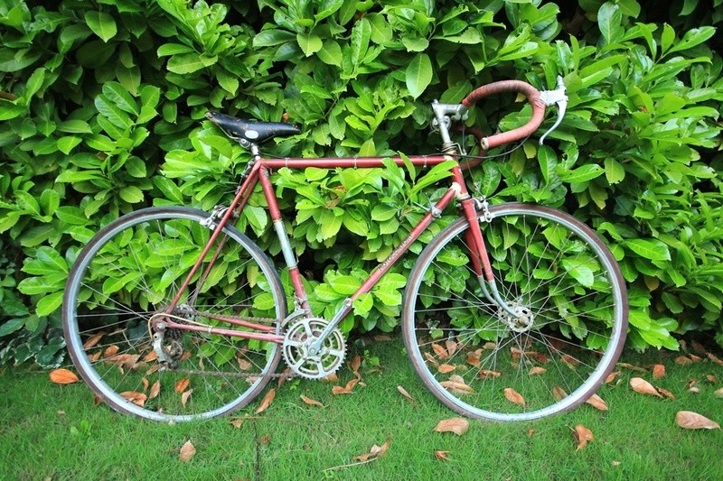 Motoconfort Cadre Reynolds A des années 50 Img_7518