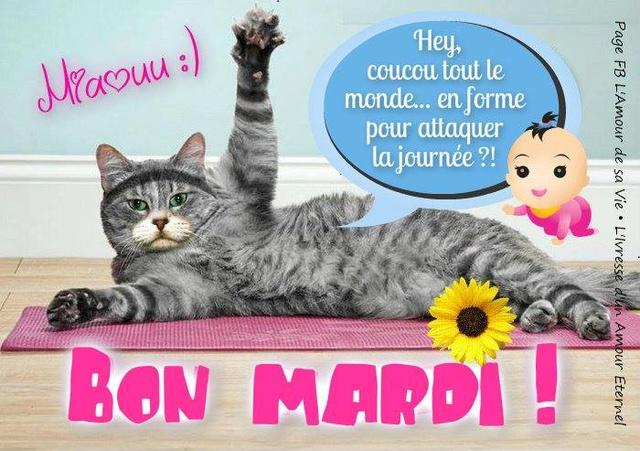 Bonjour /bonsoir de Septembre - Page 5 Mardi_14