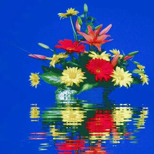 citation proverbe Fleur010