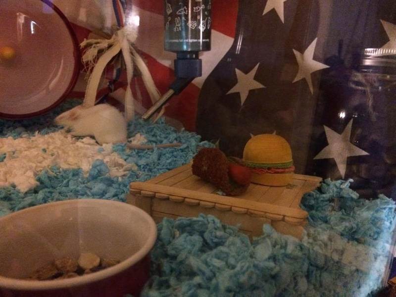 HAPPY 4th OF JULY from Napoleon <3 19747810