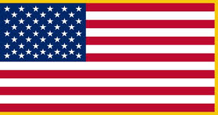Know Your Flag 1 Us_mil10