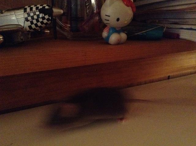 Biggy on my desk! Image47