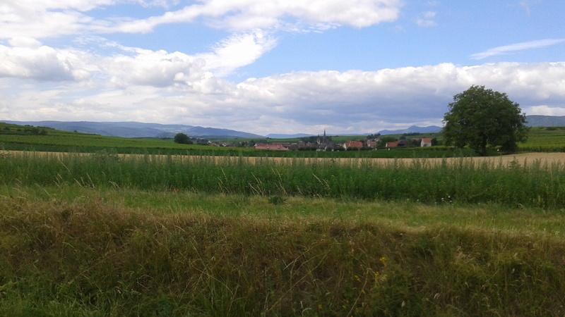 Balade en N'Alsace 20170615