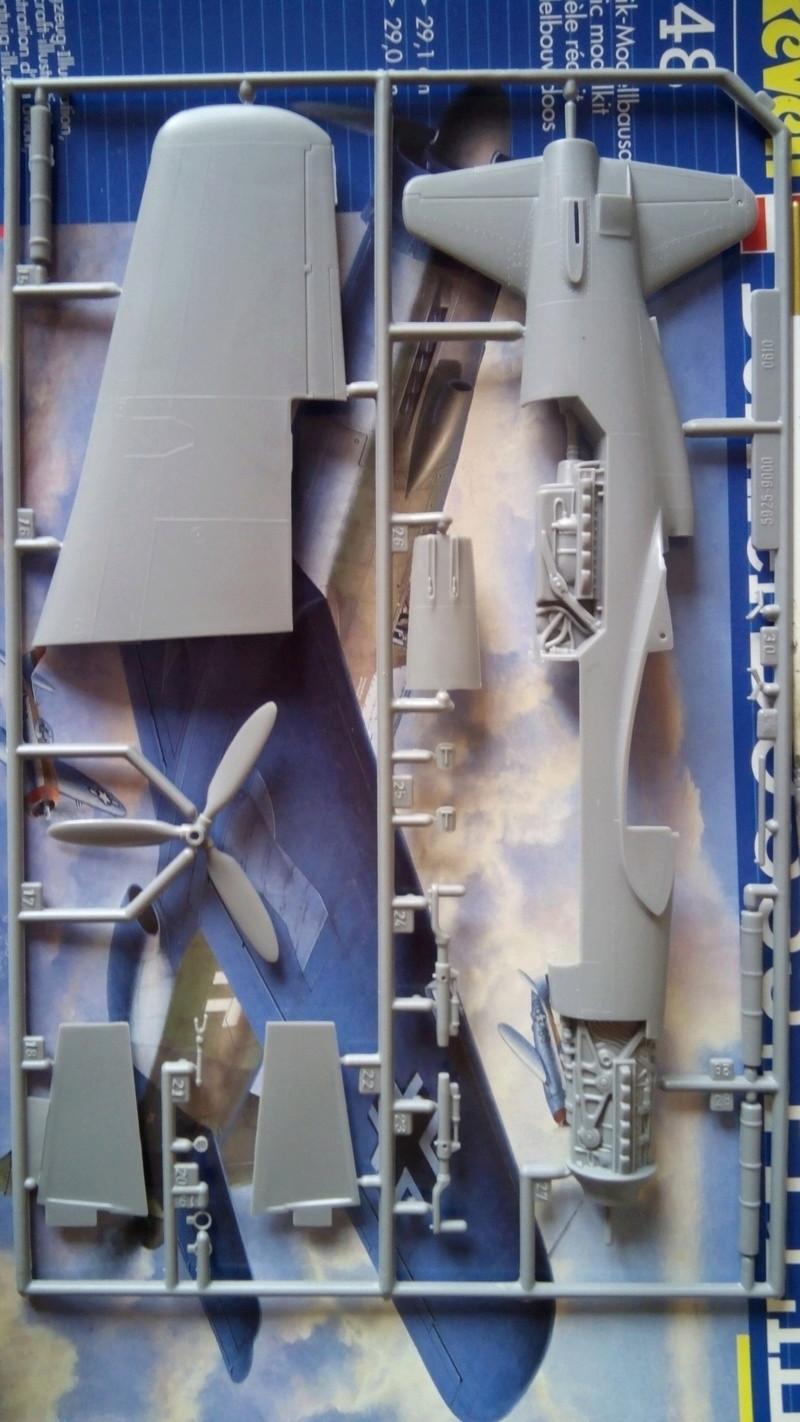 """Обзор Dornier Do.335 """"Pheil"""" A-1/A-12(Revell) Img_2020"""