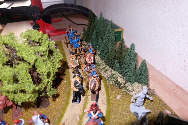 Napoleonische Artillerie am Vortag der Schlacht 1:32 - Seite 4 Dscf4811
