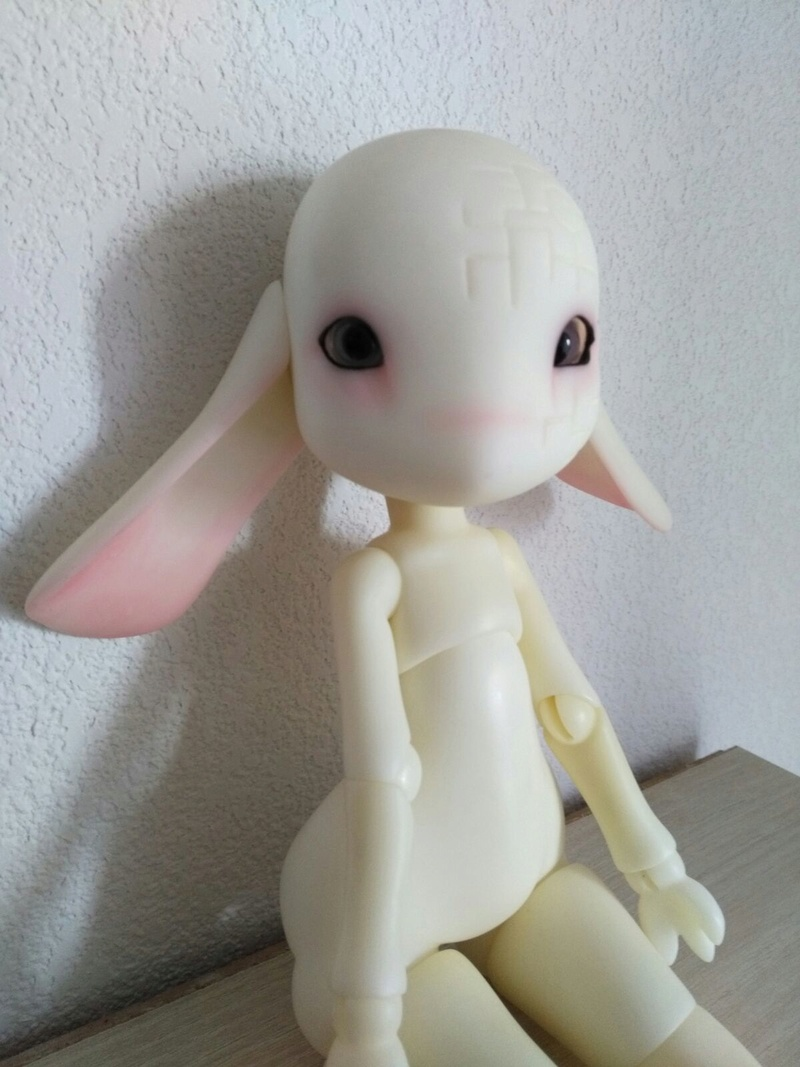 [VENDS] DOD MSD Kirill + Tête SD Migidoll limited Img-2011