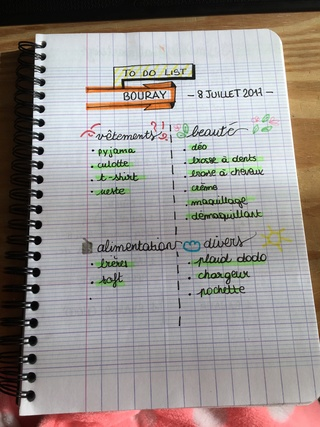 Votre bullet journal - Page 3 Img_4511