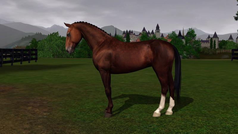 Регистрация лошадей в RHF 2 - Страница 8 Aoaia_10