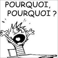 Le Moment Curieux - Page 2 5_s8lu11