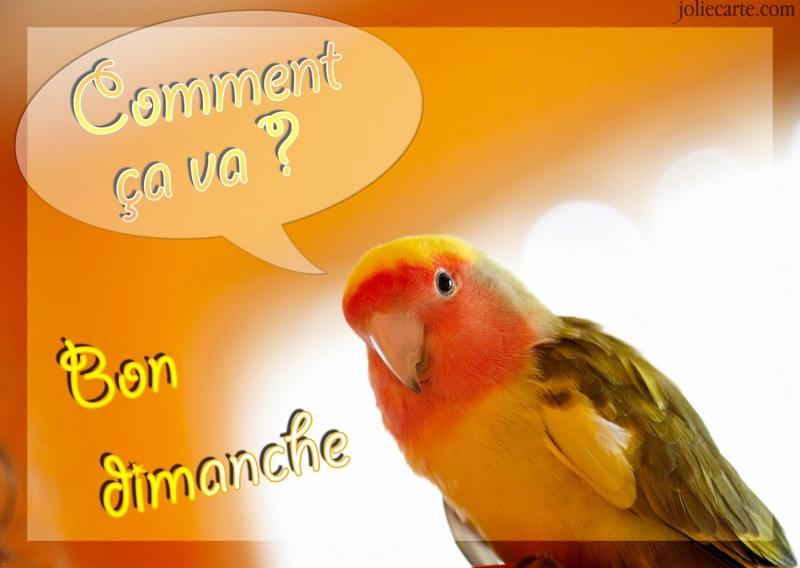 Le dimanche c'est permis ........ Dimanc17