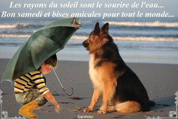 Bonjour /bonsoir de Septembre - Page 6 C80e9911