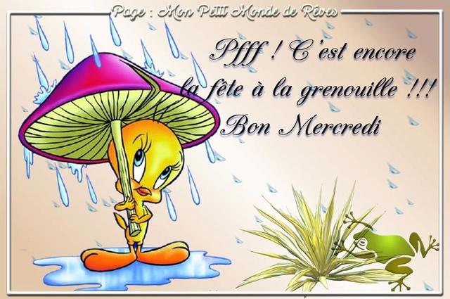 Bonjour /bonsoir de Septembre - Page 3 Mercre11