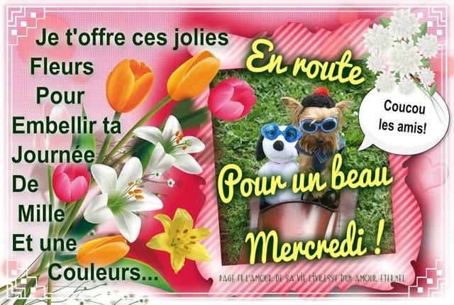 Bonjour /bonsoir de Septembre - Page 5 Mercre12