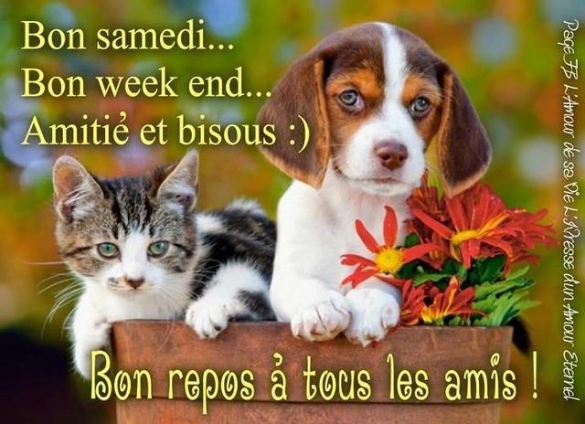 Bonjour /bonsoir de Septembre - Page 5 Samedi10