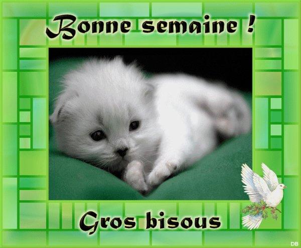 Bonjour / Bonsoir d'Octobre  - Page 2 Souhai11