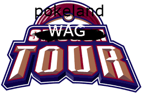 POKELAND SWAG TOURNAMENT (approved by distribounet) Pokelo10