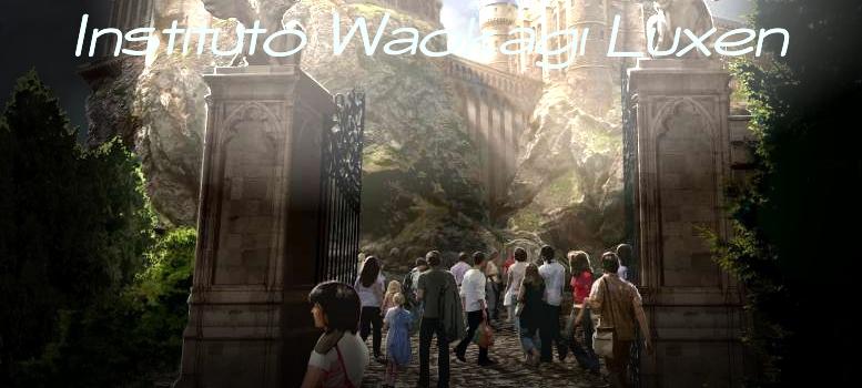 IWL [Instituto de Kinesis]