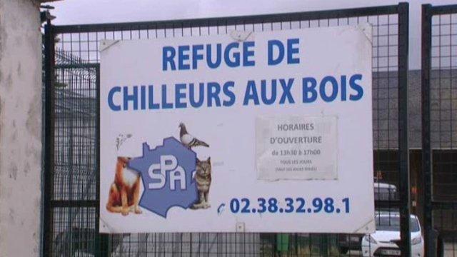REFUGE LE MOULIN D'EN HAUT - CHILLEURS AUX BOIS (45) Refuge10