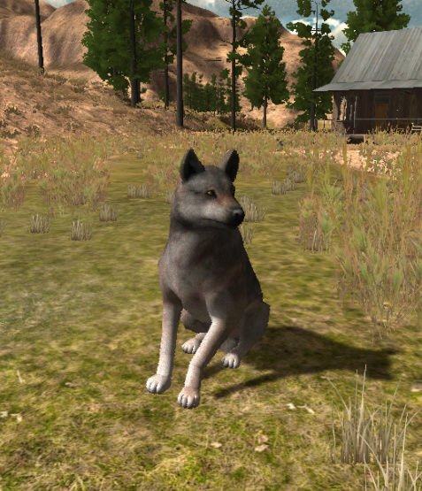 Info for the pack roster Bluff_10