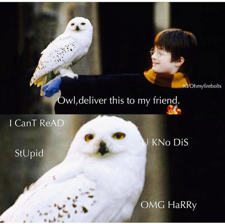 Harry Potter LMAO pictures - Σελίδα 14 Screen10