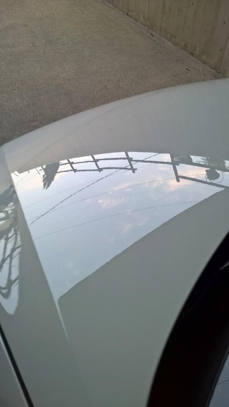 polo bianca nuova Wp_20128
