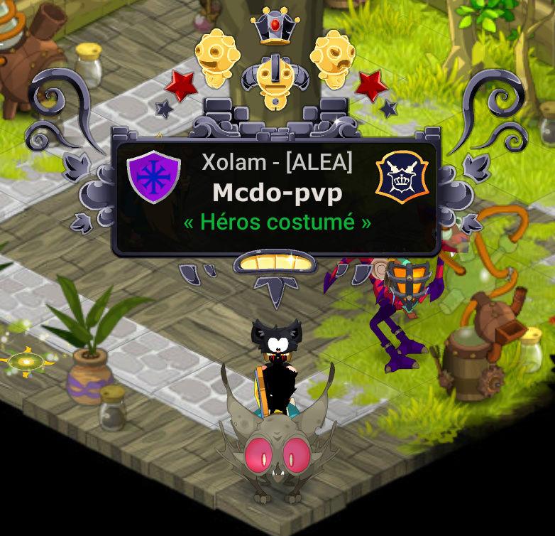 Présentation de Mcdo-pvp Dofus-12