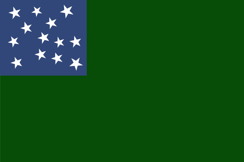 Best American flag  - Page 2 Flag_o10