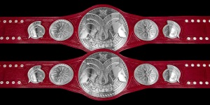 Titre Smackdown et Raw Tag_te10