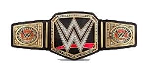 Champions Actuels Wwe_wo14