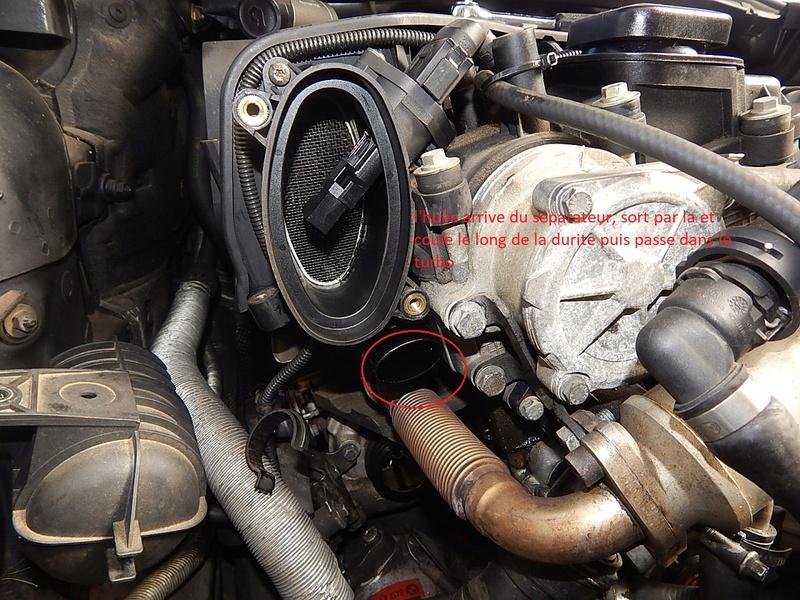 [ BMW E46 320d M47 an 1998 ] Monter un récupérateur d'huile (résolu) Dscn5512