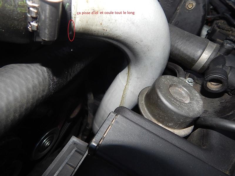 [ BMW E46 320d M47 an 1998 ] Monter un récupérateur d'huile (résolu) Dscn5611