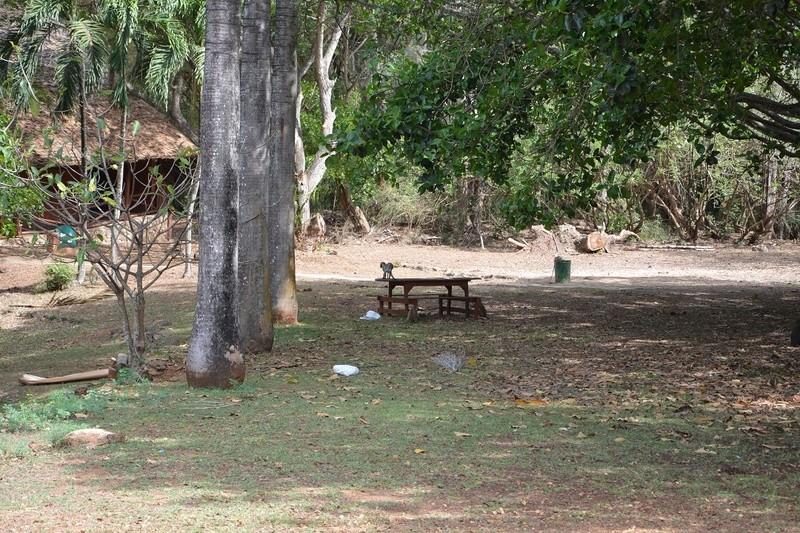 photos du kenya  Dsc_0014