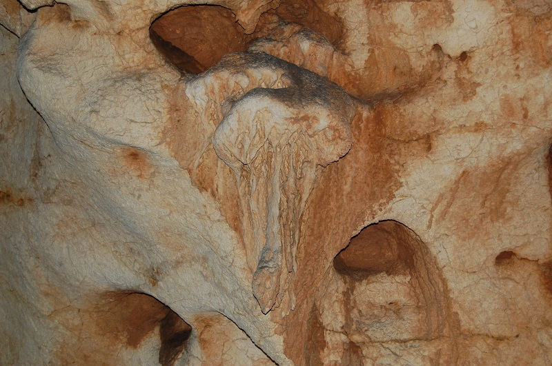 la grotte saint marcel Dsc_0106