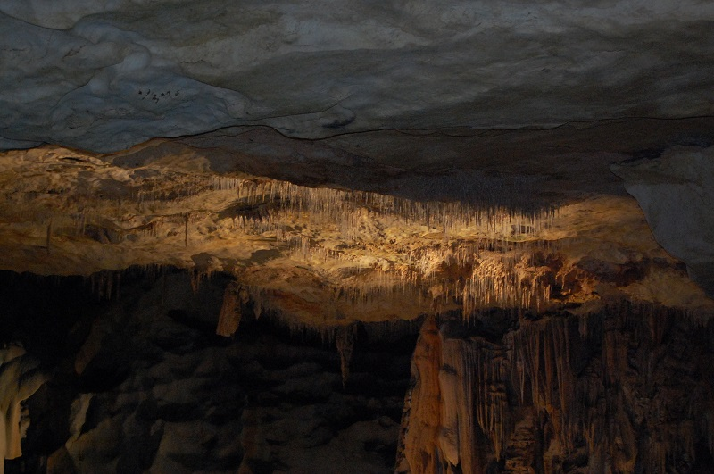 la grotte saint marcel Dsc_0160