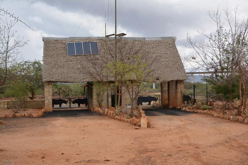 photos du kenya  Dsc_0205