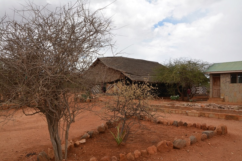 photos du kenya  Dsc_0206